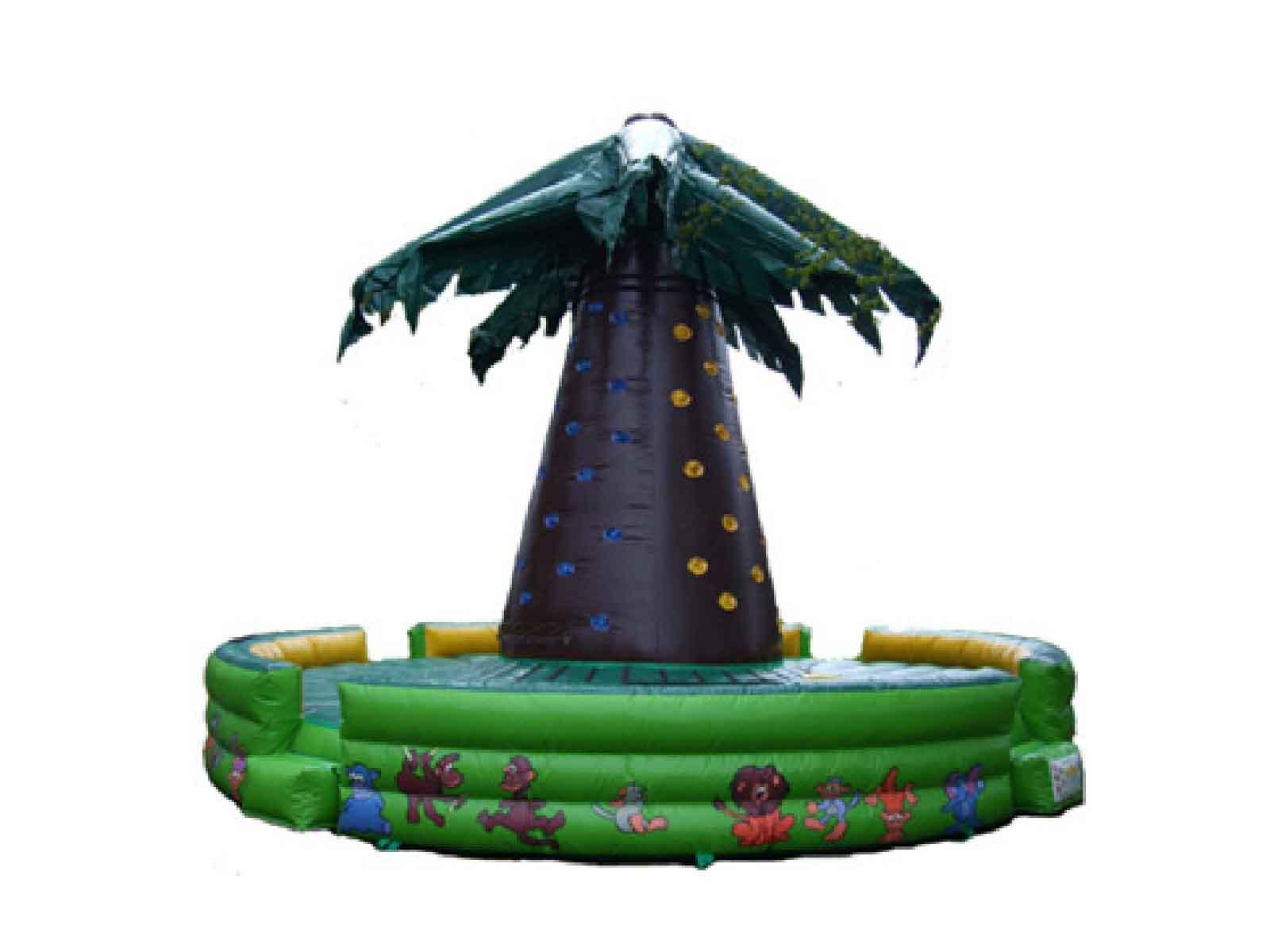 jeux gonflable palmier